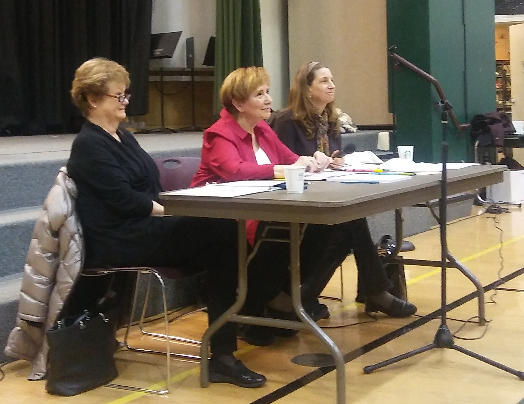 Rep. Judy Clibborn, Sen. Lisa Wellman, Rep. Tana Senn at 41st LD Town Hall, Feb 17, 2018