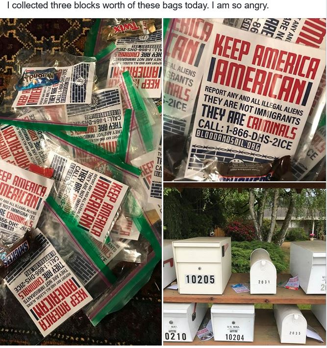 Keep America American: Nazi leafleting in Clyde Hill, WA